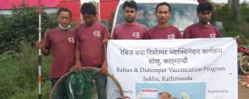 Rabies and Distemper Vaccination programme Organized !!!